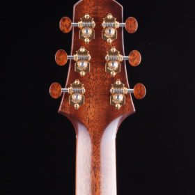 Guitar - String Instrument