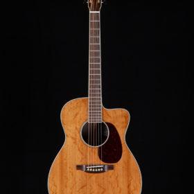 The Fretted Buffalo - Guitar