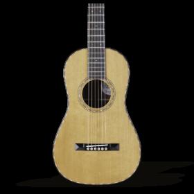 Acoustic Guitar - Guitar