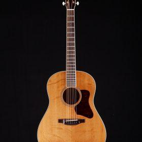 Guitar Amp - C. F. Martin & Company
