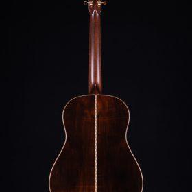 String Instrument - Acoustic Guitar
