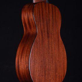 String Instrument - Tiple