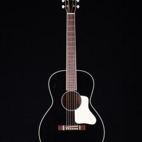 Bass Guitar - String Instrument