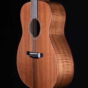 String Instrument - Bass Guitar